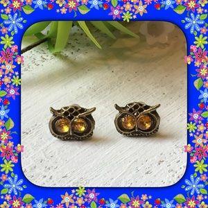 Jewelry - 🆕 Owl 🦉 Earrings